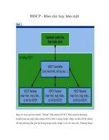 Tài liệu HDCP - Rào cản hay bảo mật pptx