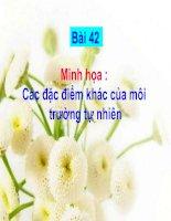 Tài liệu Minh hoa Bai 42 - Cac dac diem khac cua moi truong tu nhien Trung va Nam My