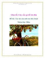 Tài liệu Chủ đề: Cây cần gì để lớn lên - Đề tài: Cây táo của anh em nhà chuột - Nhóm lớp: Mầm docx