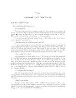 Tài liệu Chăn nuôi bò sinh sản - Chương 3 ppt