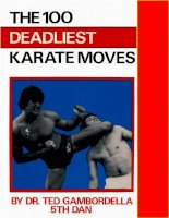 The 100 Deadliest Karate Moves