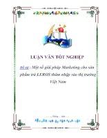 """Tài liệu Đề tài :""""Một số giải pháp Marketing cho sản phẩm trà LEROS thâm nhập vào thị trường Việt Nam"""" pdf"""