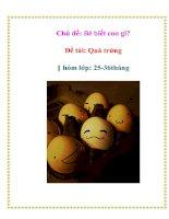 Tài liệu Chủ đề: Bé biết con gì? - Đề tài: Quả trứng - Nhóm lớp: 25-36 tháng pdf