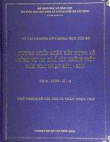 Phương pháp luận xây dựng lộ trình tự do hóa tài chính việt nam giai đoạn 2001   2010 đề tài nghiên cứu khoa học cấp bộ