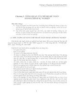 Chương 1. TỔNG QUAN VỀ CHẾ ĐỘ KẾ TOÁN HÀNH CHÍNH SỰ NGHIỆP