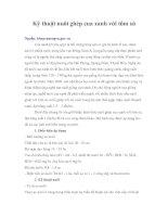 Tài liệu Kỹ thuật nuôi ghép cua xanh với tôm sú pdf