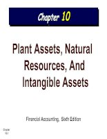 PLANT ASSETS,NATURAL RESOURCES AND TANGIBLE ASSETS