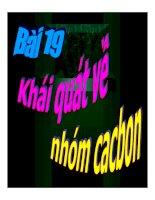 Tài liệu Khái quát nhóm cacbon pptx