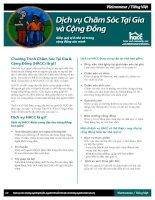 Tài liệu Dịch vụ Chăm Sóc Tại Gia và Cộng Đồng pptx