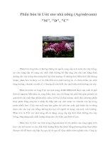 Tài liệu Phân bón lá Ước mơ nhà nông (Agrodream)