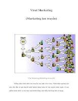 Tài liệu Viral Marketing (Marketing lan truyền) docx