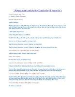 Tài liệu Nouns and Ariticles (Danh từ và mạo từ ) docx
