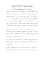 Tài liệu LUYỆN ĐỌC TIẾNG ANH QUA TÁC PHẨM VĂN HỌC-SHORT STORY BY O'HENRY- Two Thanksgiving Day Gentlemen docx