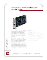 Tài liệu Soneplex® E1 Quad Loop Extender Module (EQLX) doc