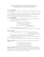 Bài giảng Đề thi chọn HSG Tiếng Việt lớp 4