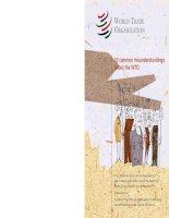 10 common misunderstanding of the WTO