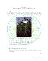 Tài liệu Giáo trình sinh thái học đồng ruộng - Chương 4 doc