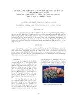 Tài liệu KỸ THUẬT BÊ TÔNG RỖNG DÙNG XÂY DỰNG LỀ ĐƯỜNG VÀ CÔNG TRÌNH CÔNG CỘNG pdf
