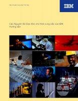 Tài liệu Các Nguyên tắc Đạo đức cho Nhà cung cấp của IBM doc