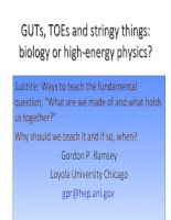 Tài liệu GUTS, TOES and stringy things: biology or highenergy physics? docx