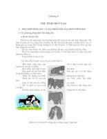 Tài liệu Chăn nuôi bò sinh sản - Chương 4 doc