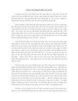 Tài liệu CUỘC CÁCH MẠNG MỚI CỦA SONY ppt