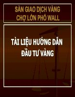 Tài liệu Huong dan dau tu vang doc