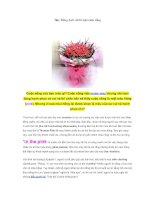 Học Tiếng Anh với bí mật cuộc sống 5