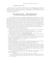 Bàn về 4 chữ Thiết kiến ngụy sứ trong Hịch tướng sĩ