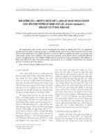 ảnh h-ởng của a-naphtyl axetic axit (a-naa) và chlor cholin chlorit (ccc) đến sinh tr-ởng và năng suất lạc (Arachis hypogaea L.) trên đất cát ở Thừa Thiên Huế
