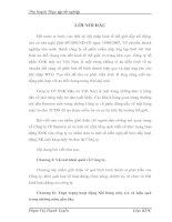 ĐỊNH HƯỚNG PHÁT TRIỂN CỦA CÔNG TY TRONG THỜI GIAN TỚI VÀ ĐỀ XUẤT MỘT SỐ GIẢI PHÁP NHẰM ĐẦY MẠNH HOẠT ĐỘNG XUẤT KHẨU MÂY TRE CÔNG TY23