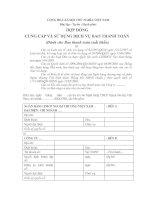 Mẫu hợp ĐỒNG CUNG cấp và sử DỤNG DỊCH vụ BAO THANH TOÁN (dành cho bao thanh