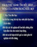 Bai 26 TH Tim hieu hoat dong cua en zim trong nuoc bot