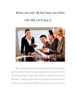 Khảo sát mức độ hài lòng của nhân viên đối với công ty
