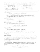 Đề thi chọn lọc học sinh giỏi cấp tỉnh An Giang năm học 2012- 2013 môn toán