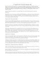 13 nguyên tắc về các kỹ năng học tập (phần 2)