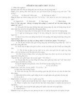 đề kiểm tra kiến thức tuần 1