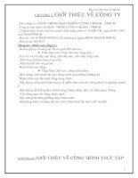 BÁO CÁO TỐT NGHIỆP - ĐỒ ÁN THI CÔNG -CÔNG TRÌNH ĐƯỜNG GIAO THÔNG KM 500