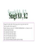 Key snagit 8.2 và 8.0
