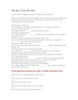 Bài tập về câu điều kiện