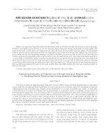 BƯỚC ĐẦU ĐÁNH GIÁ KHẢ NĂNG ỨNG DỤNG HỆ TRÌNH TỰ LẶP LẠI ĐƠN GIẢN (SSRs) TRONG NGHIÊN CỨU QUAN HỆ DI TRUYỀN GIỮA CÁC CHỦNG NẤM MỐC Aspergillus spp.