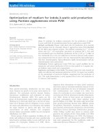 BT 3   optimization of medium for indole 3 acetic acid production using pantoea agglomerans strain PVM