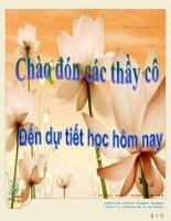 Bai 24 : Nhan dan Viet Nam khang chien chong Phap xam luoc (1858-1873