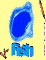 Học nói các loài cá bằng tiếng anh qua hình ảnh