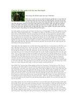 Chuyên đề bảo quản trái cây sau thu hoạch