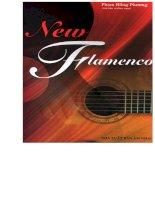 Độc tấu Guitar - New Flamenco part 1