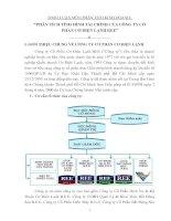 Thảo luận phân tích kinh doanh phân tích tình hình tài chính của công ty cổ phần cơ điện lạnh