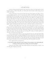 GIẢI PHÁP ĐẨY MẠNH XUẤT KHẨU HÀNG DỆT MAY VIỆT NAM SANG THỊ TRƯỜNG MỸ