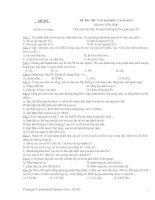 LTDH đẳng cấp đề 002