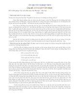 Ôn thi TN - Đề 5 (Lý luận văn học)